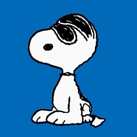 Other - Don't Be Shy, Snoopy. Make an Offer.
